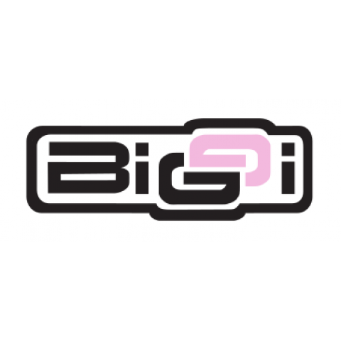 Biggi Underwear